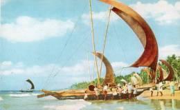 "Asie > (Sri Lanka )  Fishing ""CATAMARAN""  Boats - CEYLON (- Editions : Ceylon Pictorials Colombo CP-101) *PRIX FIXE - Sri Lanka (Ceylon)"