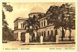 Malacca - Singapour - Musée Raffles - Singapore