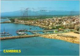 Cpsm Espagne    Cataluna Tarragona Costa Dorada Cambrils  Le Port Et La Plage - Tarragona