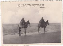 Nieuwpoort, Nieuport Bains, C'est Qu'elle Est Tout Pour Eux Xette Met éternelle, Paardenvissers (pk8281) - Nieuwpoort
