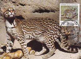 WWF - 075,33 - € 1,12 - CM-MC - 23-12-1988 - 55c - Ocelot - El Salvador 1078212 - Salvador
