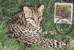 WWF - 075,34 - € 1,19 - CM-MC - 23-12-1988 - 55c - Ocelot - El Salvador 1078212 - Salvador