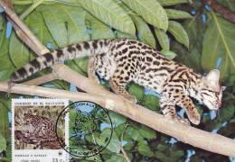 WWF - 075,32 - € 1,06 - CM-MC - 23-12-1988 - 25c - Margay - El Salvador 1078212 - Salvador