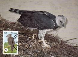 WWF - 089,34 - CM-MC - € 1,19 - 23-1-1990 - $30 - Harpy Eagle - Guyana 1095212 - Guyane (1966-...)