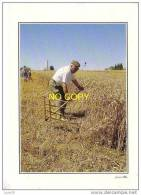 IMAGES DE NORMANDIE - Faucheur De Blé - - Cultivation