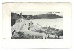 La Gileppe (Jalhay). Souvenir. Aandenken. Cachet - Stempel: Dolhain-Limbourg 1905. Timbre - Postzegel N° 53. - Gileppe (Barrage)