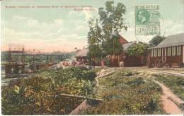 WISMAR    Terminus On Demerara River Of Sproston S Railway - Deutschland