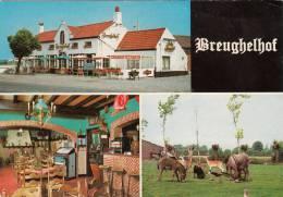 Meetkerke, Breughelhof (pk8332) - Zuienkerke