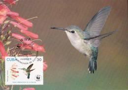 WWF - 129,34 - CM-MC - € 1,19 - 7-7-1992 - 30 - Bee Hummingbird - Cuba 1118212 - W.W.F.