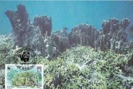 WWF - 131,31 - CM-MC - € 1,00 - 1-9-1992 - 10C - Blue Coral - Tuvalu 1145212 - W.W.F.
