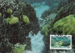 WWF - 131,32 - CM-MC - € 1,06 - 1-9-1992 - 25C - Blue Coral - Tuvalu 1145212 - W.W.F.