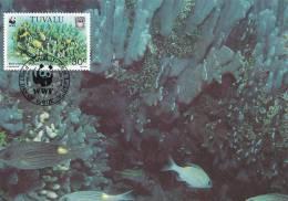 WWF - 131,33 - CM-MC - € 1,12 - 1-9-1992 - 30C - Blue Coral - Tuvalu 1145212 - W.W.F.