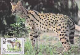 WWF - 133,31 - CM-MC - € 1,87 - 16-10-1992 - 30F - Serval - Burundi 1147212 - W.W.F.