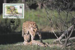 WWF - 133,33 - CM-MC - € 2,10 - 16-10-1992 - 200F - Serval - Burundi 1147212 - W.W.F.