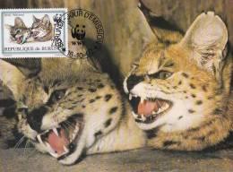 WWF - 133,34 - CM-MC - € 2,22 - 16-10-1992 - 220F - Serval - Burundi 1147212 - W.W.F.