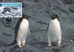 WWF - 134,32 - CM-MC - € 1,27 - 20-10-1992 - 5p - Antarctic Wildlife - Brit. Antarctic Terr. 1139212 - W.W.F.