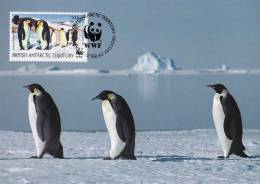 WWF - 134,34 - CM-MC - € 1,42 - 20-10-1992 - 29p - Antarctic Wildlife - Brit. Antarctic Terr. 1139212 - W.W.F.