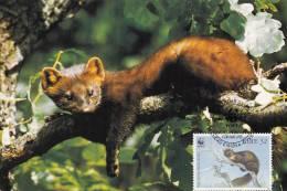 WWF - 130,32 - CM-MC - € 1,06 - 9-7-1992 - 32 - Pine Marten - Ireland 1128212 - W.W.F.