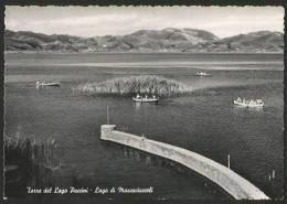 TORRE DEL LAGO PUCCINI Lago Di Massaciuccoli Ca. 1960 - Lucca