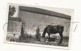 Evry (91) : Un Cheval Et L´apprenti à L´abreuvoir De La Ferme D´Evry-Petit-Bourg En 1950 (animée) PHOTO RARE. - Lieux