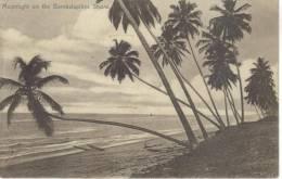 SRI LANKA - MOONLIGHT ON THE BAMBALAPITIYA SHORE - Sri Lanka (Ceylon)