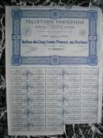 Action - France - Pelleterie Parisienne - Paris 1929 - Action De 500 F - Industrie