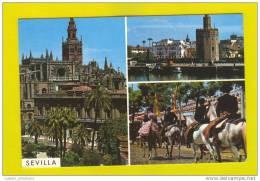 ..... PC SPAIN ESPAÑA SEVILLA & SPANISH HORSE HORSES 1970s CHEVAUX CAVALOS CABALOS - Chevaux