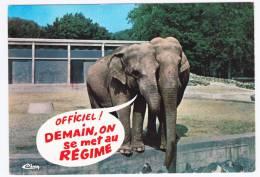 ANIMAUX HUMORISTIQUES - ELEPHANTS - TU ME TROMPE - CARTE NON VOYAGEE - Elephants