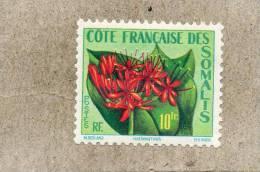 Côte Française Des Somalis : Fleur : Haemanthus  - Famille Des Amaryllidaceae - Côte Française Des Somalis (1894-1967)