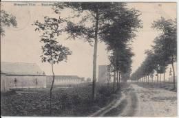 16741g BOULEVARD - Nieuport Ville - 1908 - Nieuwpoort