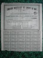 Action - France - Compagnie Marseillaise Des Ciments Du Midi - Obligation De 100 F - Marseille 1883 - Industrie