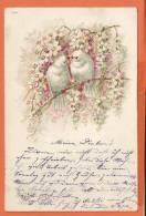 S226, Collombe, Précurseur,  Circulée 1901 - Vogels