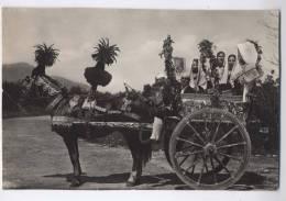 Carretto Siciliano Sicilian Cart Charrette Sicilenne Sizilianischer Karren - Ethniques & Cultures