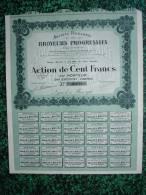 Action - France - Sté Des Broyeurs Progressifs - LYON 1920 - Action De 100  F - Industrie