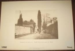 STAMPA - COSTABISSARA - CASTELLO BUZZACCARINI INGRESSO DEI CIPRESSO  ( VICENZA) - Altre Collezioni