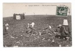 CPA : 10 - Mailly : Camp De Mailly :Tir De Guerre D'Intanerie - Manovre