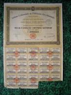 Action - Afrique - Union Coloniale De L´Afrique Occidentale - Bordeaux 1928 - - Afrique