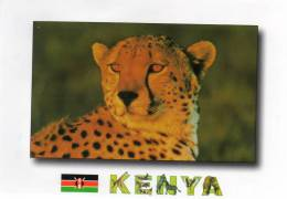 African Wildlife  (EAST -AFRICA) - KENYA - Cheetah ( Guépard)(Etat = Pas De Timbre (timbre Décollé) * PRIX FIXE - Kenya