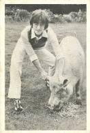 ENGLAND - MUSIC - JOHN LENNON WITH A PIG - 60S RARE PRINT. - Manifesti & Poster