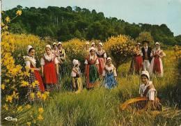 CPA-1979-84-VEDENE-GROUPE FOLKLORIQUE-RENEISSENCO--TBE - Danses