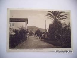Tenerife - La Laguna - Paseo De San Diego. (4 - 3 - 1928) - Tenerife