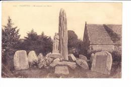PLOZEVET  --  Monument Aux Morts - Plozevet
