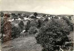 RECHT - TEILANSICHT - VUE PARTIELLE DU VILLAGE - Saint-Vith - Sankt Vith