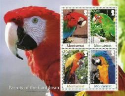 mot0710sh Montserrot 2007 Birds s/s Parrot