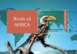 gam1139ss Gambia 2011 Birds of Africa s/s Grey Hornbill