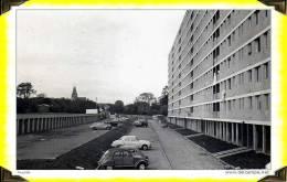 CP N°19   VILLIERS-LE-BEL  ---  La Ciriseraie   ---  95 VAL D´OISE - Villiers Le Bel