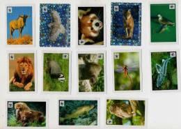 Lotto 103 Figurine WWF Coop (nuove / Ottime) Stickers Autocollant - Panini
