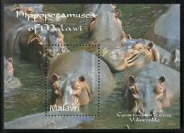 mwi0902ss Malawi 2009 Hippo Hippopotamuses s/s