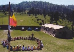SCOUTISME,SCOUTS ROMANIA ,POSTCARD UNUSED. - Scoutisme