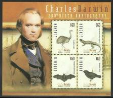 lib0925sh Liberia 2009 Charles Darwin 20oth Birthady Bird Bat s/s
